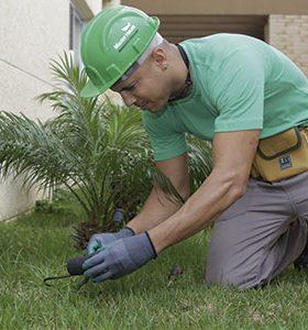 Jardineiro em São Miguel das Missões, RS