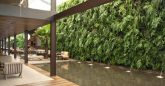 Como montar um Jardim Vertical na parede