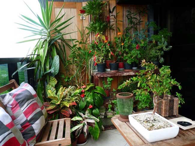 sacada com jardim