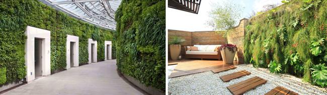 jardim verde em grandes paredes