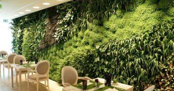 10 inspirações de jardins verticais
