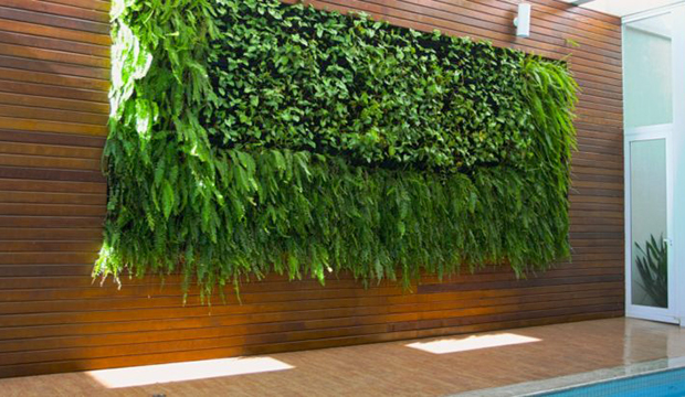Ter um jardim vertical em área externa
