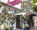 Saiba como ter um jardim vertical em casa