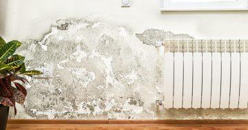 Saiba como evitar o acúmulo de umidade e mofo em casa