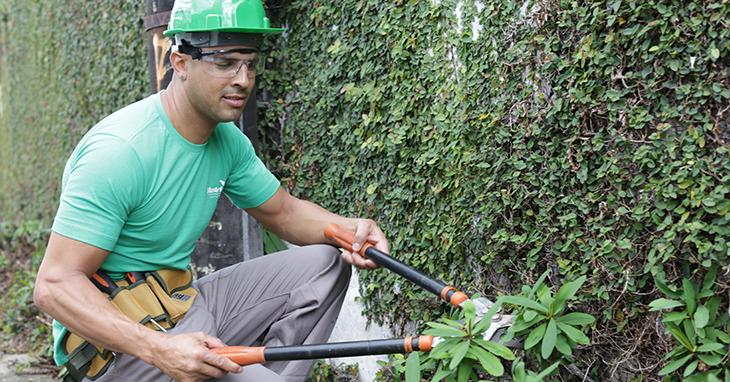 Contrate um jardineiro especializado